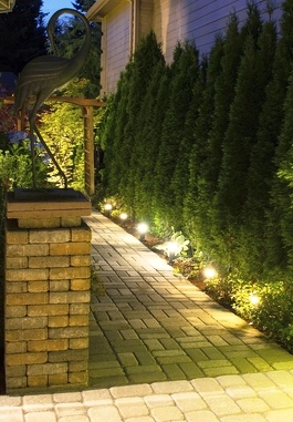 Canberra electrician home ideas for Garden design ideas canberra